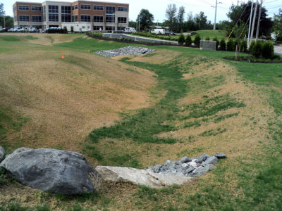 Coastway Bank lawn